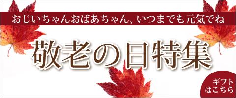 keirou001_480x200