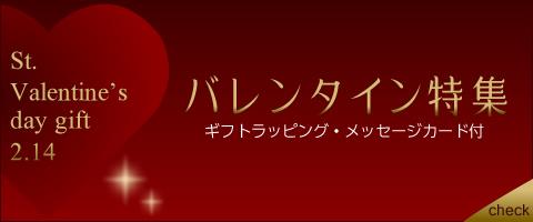 valentine005_480x200