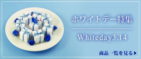 white007_480x200