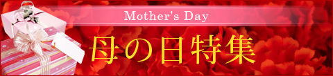 2010_mother_480x110